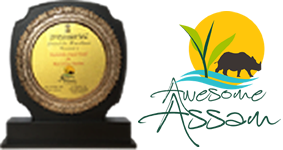 Best Cruise Experience - Assam Tourism - 2016